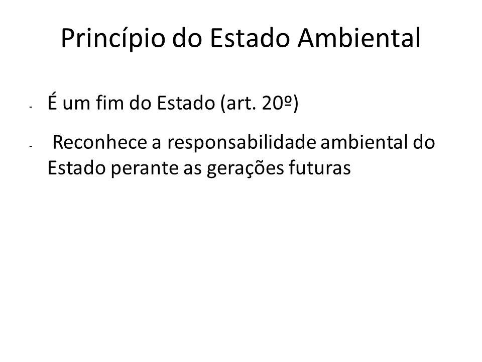 Princípio do Estado Ambiental - É um fim do Estado (art. 20º) - Reconhece a responsabilidade ambiental do Estado perante as gerações futuras