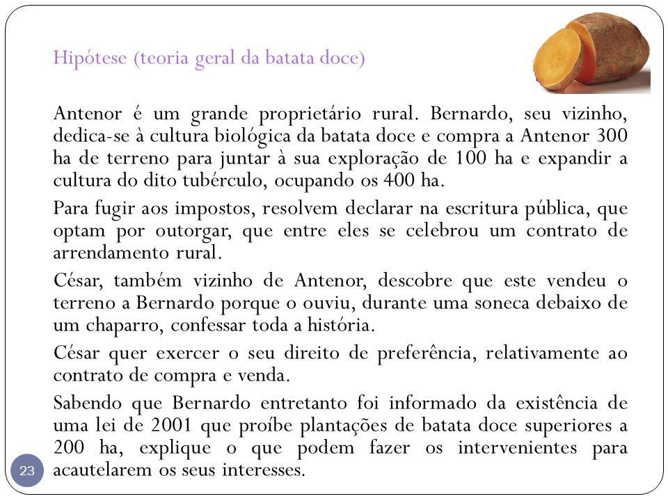 23 Hipótese (teoria geral da batata doce) Antenor é um grande proprietário rural. Bernardo, seu vizinho, dedica-se à cultura biológica da batata doce