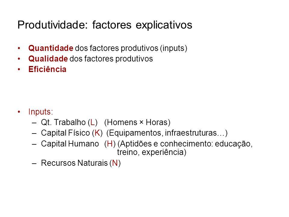 Produtividade: factores explicativos Quantidade dos factores produtivos (inputs) Qualidade dos factores produtivos Eficiência Inputs: –Qt. Trabalho (L