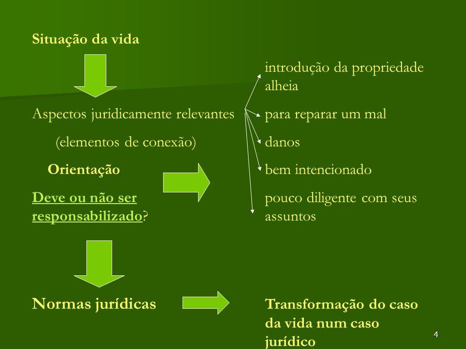 4 Situação da vida introdução da propriedade alheia Aspectos juridicamente relevantespara reparar um mal (elementos de conexão)danos Orientaçãobem int