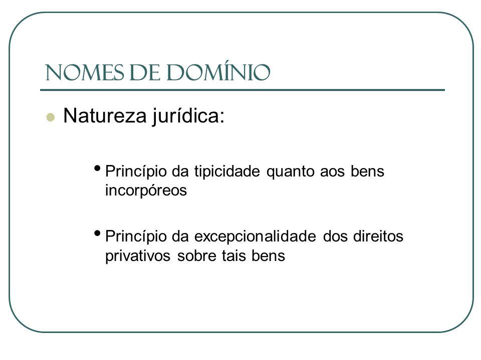 Nomes de Domínio Natureza jurídica: Princípio da tipicidade quanto aos bens incorpóreos Princípio da excepcionalidade dos direitos privativos sobre ta