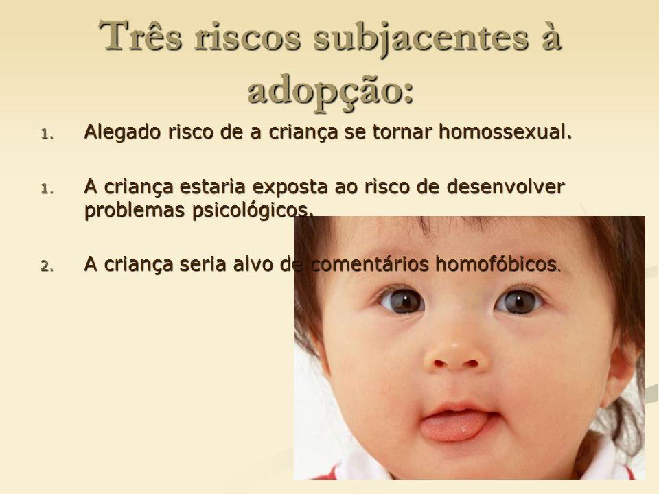 Três riscos subjacentes à adopção: 1. Alegado risco de a criança se tornar homossexual. 1. A criança estaria exposta ao risco de desenvolver problemas