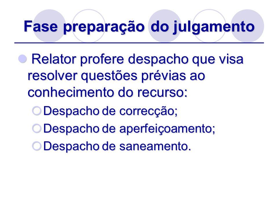 Fase preparação do julgamento Relator profere despacho que visa resolver questões prévias ao conhecimento do recurso: Relator profere despacho que vis