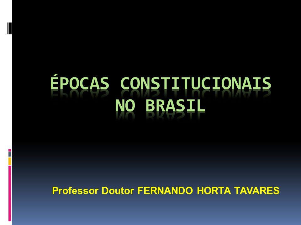Professor Doutor FERNANDO HORTA TAVARES
