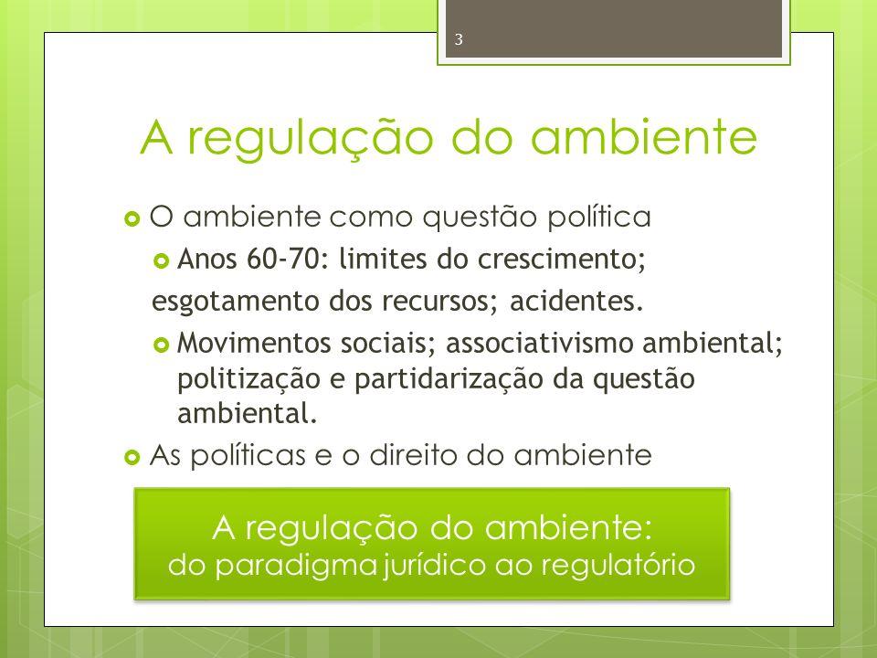 3 A regulação do ambiente O ambiente como questão política Anos 60-70: limites do crescimento; esgotamento dos recursos; acidentes.