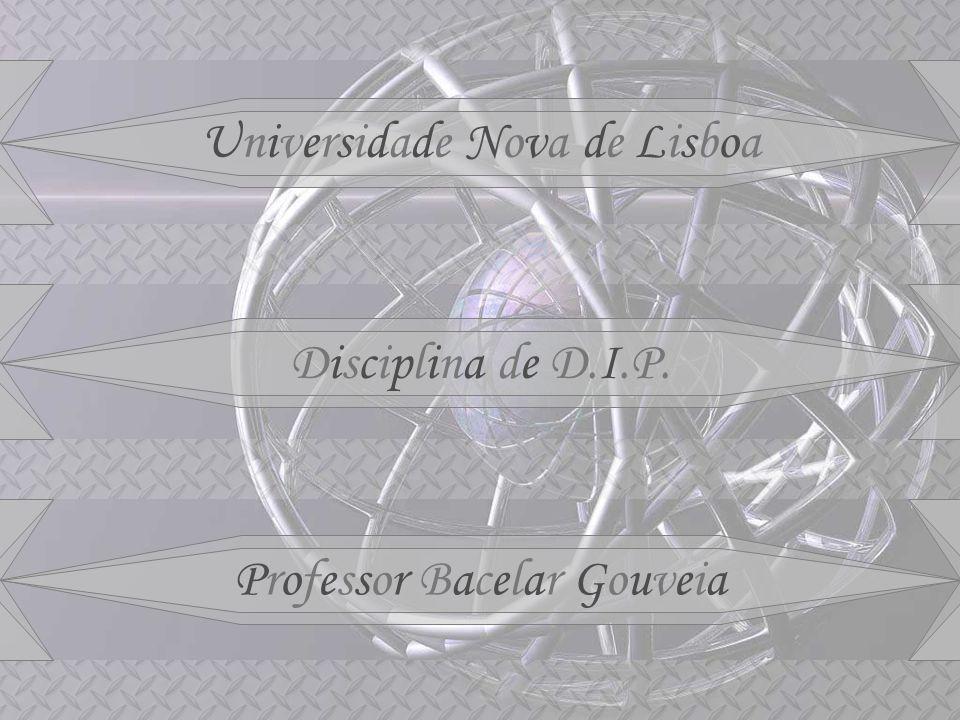Universidade Nova de Lisboa Disciplina de D.I.P. Professor Bacelar Gouveia