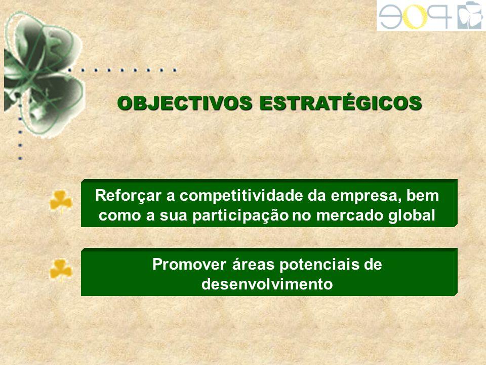 OBJECTIVOS ESTRATÉGICOS Reforçar a competitividade da empresa, bem como a sua participação no mercado global Promover áreas potenciais de desenvolvime