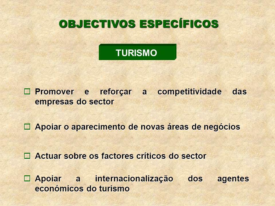 ¨Promover e reforçar a competitividade das empresas do sector ¨Apoiar o aparecimento de novas áreas de negócios ¨Actuar sobre os factores críticos do