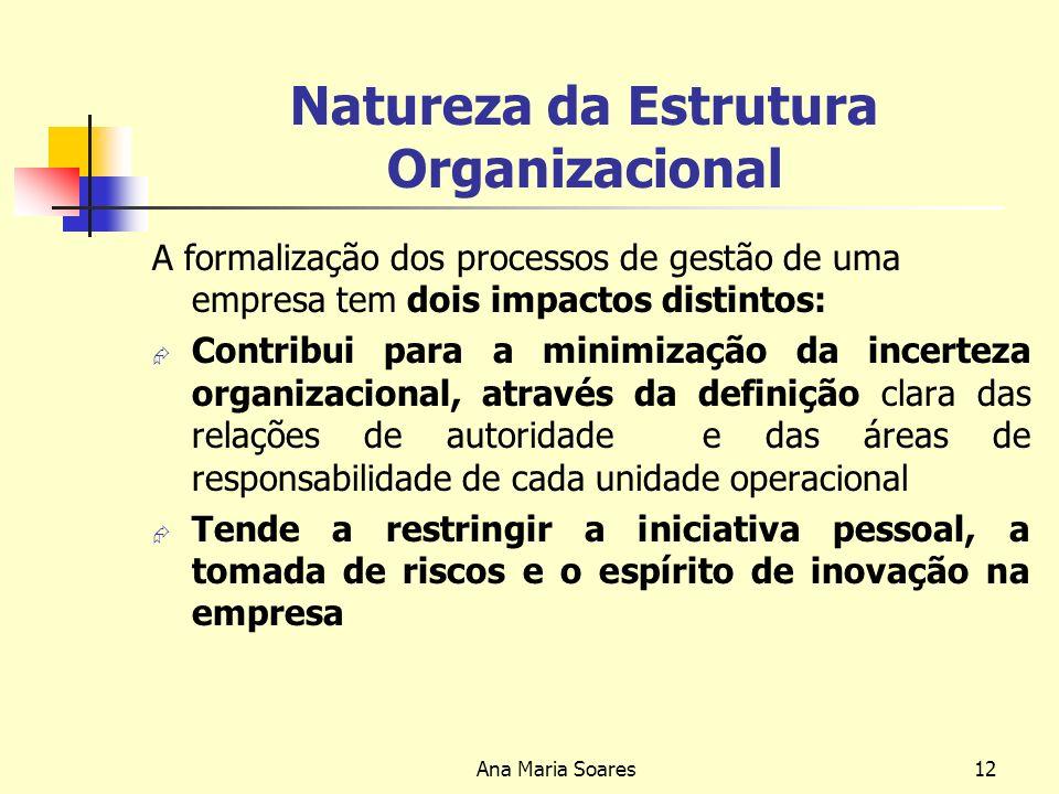 Ana Maria Soares11 Tipos de Departamentalização Por Funções: agrupam as actividades da organização de acordo com as grandes funções desempenhadas; Por Produtos ou Serviços: u ma departamentalização orientada para as vendas e que leva a uma descentralização do poder de decisão.