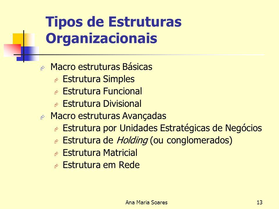 Ana Maria Soares12 Natureza da Estrutura Organizacional A formalização dos processos de gestão de uma empresa tem dois impactos distintos: Contribui p