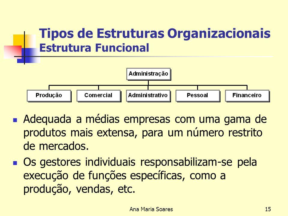 Ana Maria Soares14 Tipos de Estruturas Organizacionais Estrutura Simples A estrutura simples é : Geralmente adoptada por pequenas empresas geridas pelo próprio empresário fundador ou por um só gestor, que supervisiona directamente as actividades de todos os funcionários e trabalhadores; Adequada para pequenas empresas com poucos produtos para um número restrito de mercados.