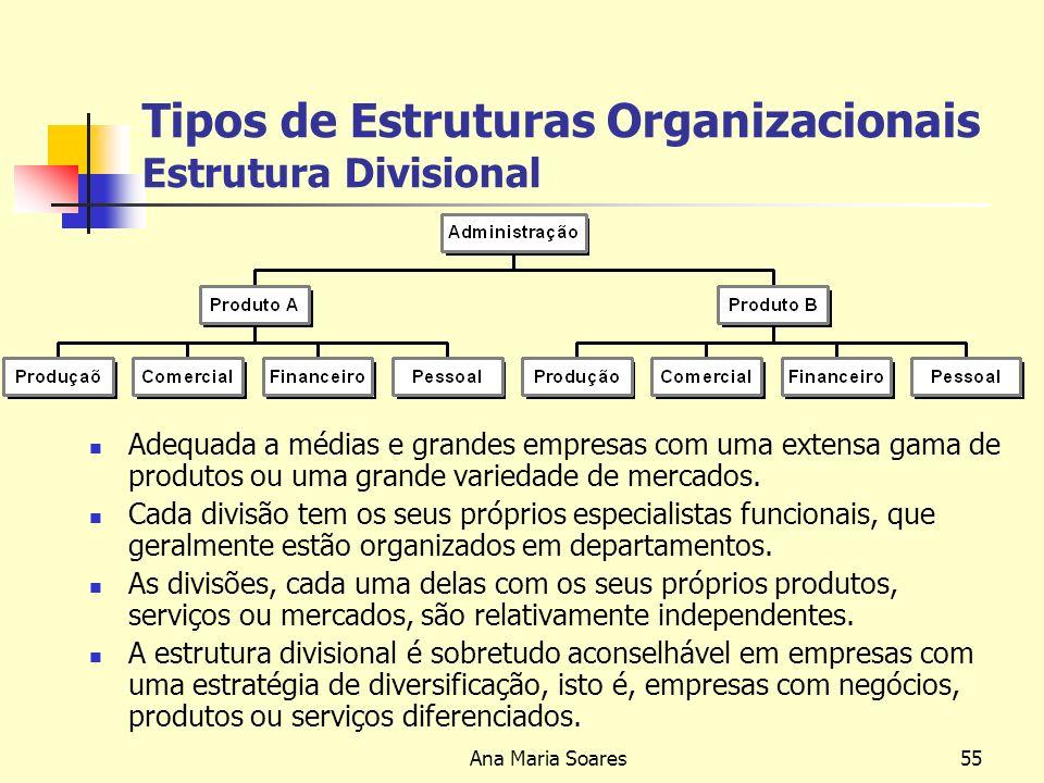 Ana Maria Soares54 Tipos de Estruturas Organizacionais Estrutura Funcional Adequada a médias empresas com uma gama de produtos mais extensa, para um número restrito de mercados.
