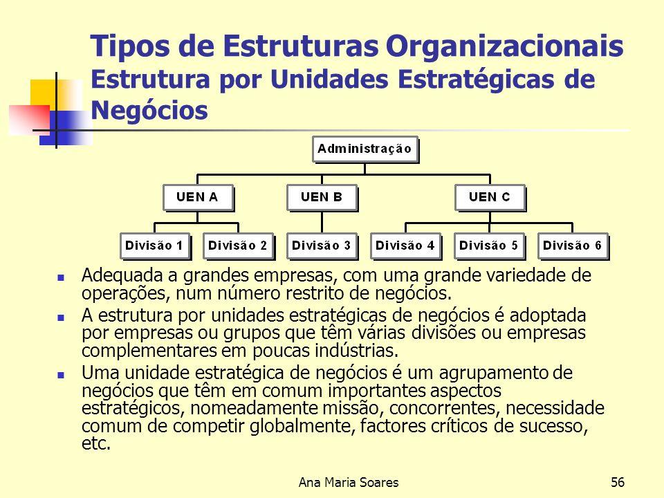 Ana Maria Soares55 Tipos de Estruturas Organizacionais Estrutura Divisional Adequada a médias e grandes empresas com uma extensa gama de produtos ou uma grande variedade de mercados.