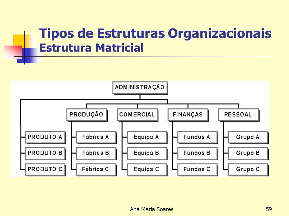 Ana Maria Soares58 Tipos de Estruturas Organizacionais Estrutura de Holding ou Conglomerados Adequada a grandes empresas, com uma grande variedade de operações, num número elevado de negócios.