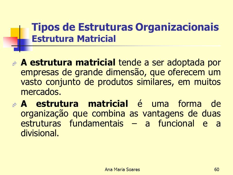 Ana Maria Soares59 Tipos de Estruturas Organizacionais Estrutura Matricial
