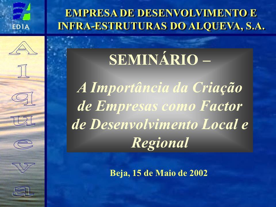 SEMINÁRIO – A Importância da Criação de Empresas como Factor de Desenvolvimento Local e Regional Beja, 15 de Maio de 2002 EMPRESA DE DESENVOLVIMENTO E