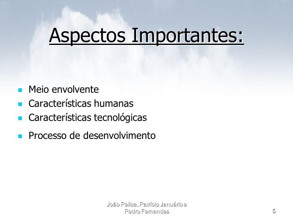 João Pelica, Patrício Januário e Pedro Fernandes5 Aspectos Importantes: Meio envolvente Meio envolvente Características humanas Características humana