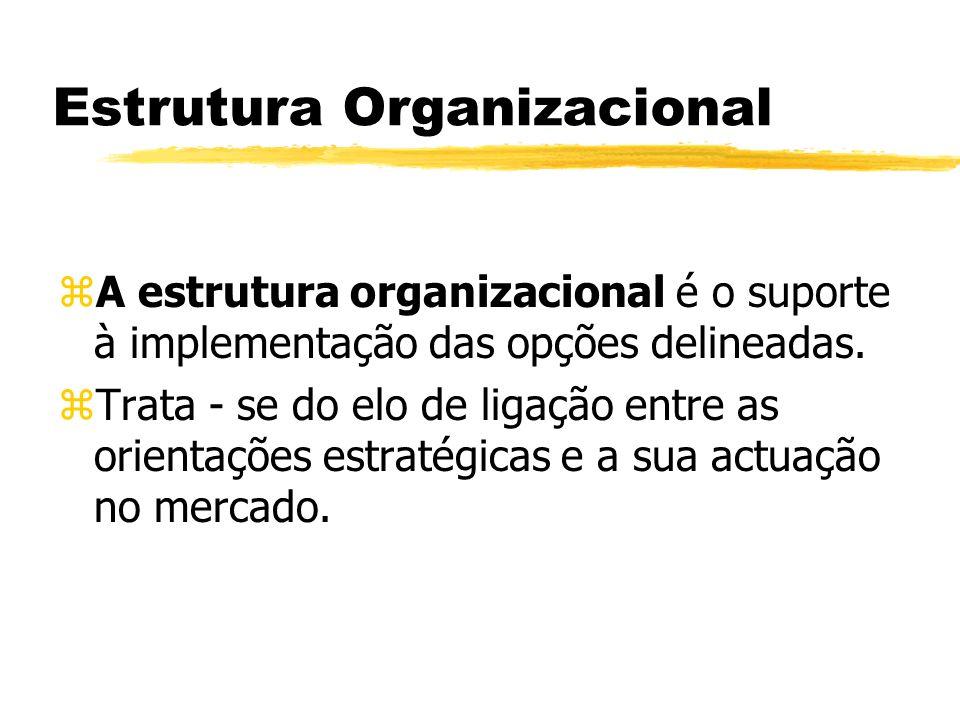 Estrutura Organizacional zA estrutura organizacional é o suporte à implementação das opções delineadas. zTrata - se do elo de ligação entre as orienta