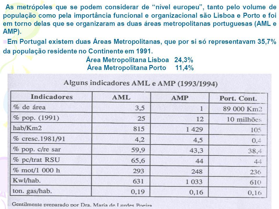 As metrópoles que se podem considerar de nível europeu, tanto pelo volume de população como pela importância funcional e organizacional são Lisboa e Porto e foi em torno delas que se organizaram as duas áreas metropolitanas portuguesas (AML e AMP).