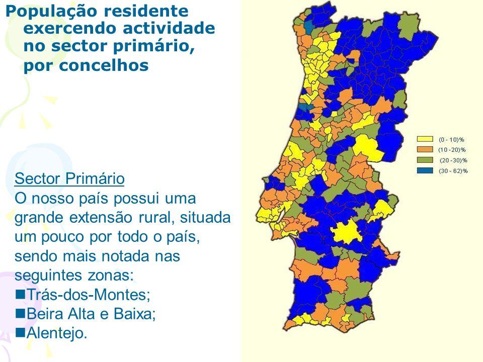 População residente exercendo actividade no sector primário, por concelhos Sector Primário O nosso país possui uma grande extensão rural, situada um pouco por todo o país, sendo mais notada nas seguintes zonas: Trás-dos-Montes; Beira Alta e Baixa; Alentejo.