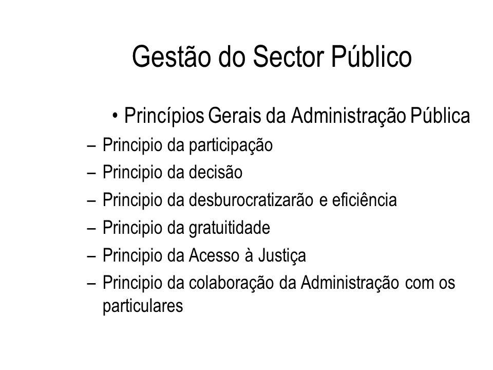 Gestão do Sector Público Princípios Gerais da Administração Pública –Principio da participação –Principio da decisão –Principio da desburocratizarão e