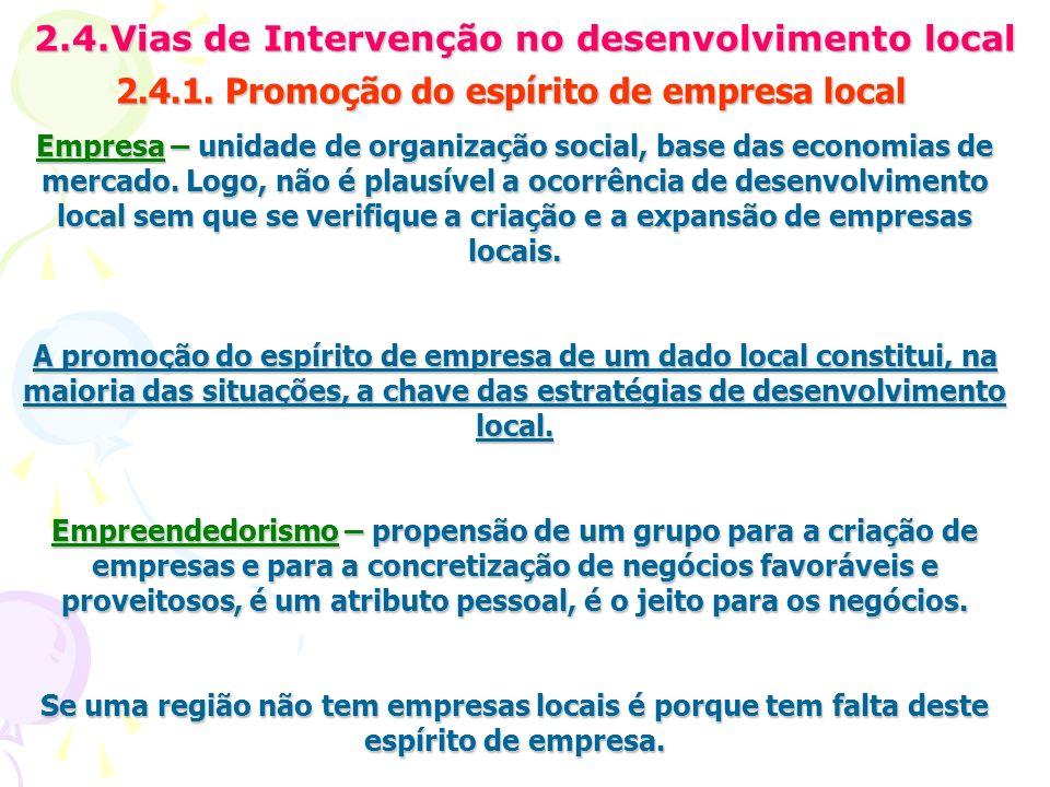 2.4.Vias de Intervenção no desenvolvimento local 2.4.1. Promoção do espírito de empresa local Empresa – unidade de organização social, base das econom