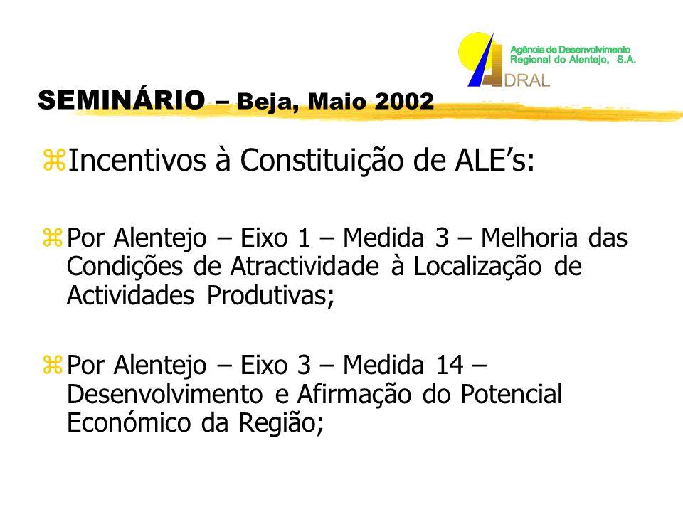 SEMINÁRIO – Beja, Maio 2002 zIncentivos à Constituição de ALEs: zPor Alentejo – Eixo 1 – Medida 3 – Melhoria das Condições de Atractividade à Localização de Actividades Produtivas; zPor Alentejo – Eixo 3 – Medida 14 – Desenvolvimento e Afirmação do Potencial Económico da Região;
