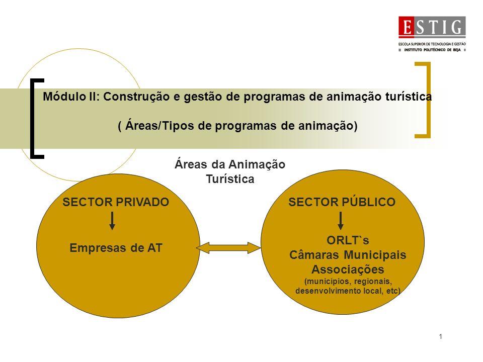 1 Módulo II: Construção e gestão de programas de animação turística ( Áreas/Tipos de programas de animação) Áreas da Animação Turística SECTOR PRIVADO