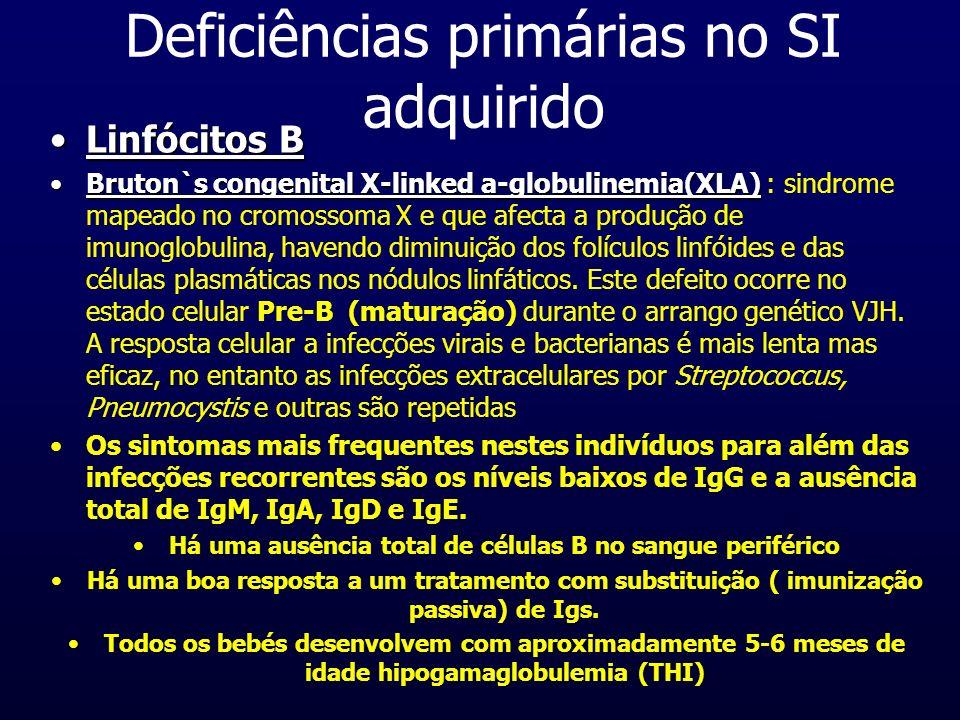 Deficiências primárias no SI adquirido Linfócitos BLinfócitos B Bruton`s congenital X-linked a-globulinemia(XLA)Bruton`s congenital X-linked a-globuli