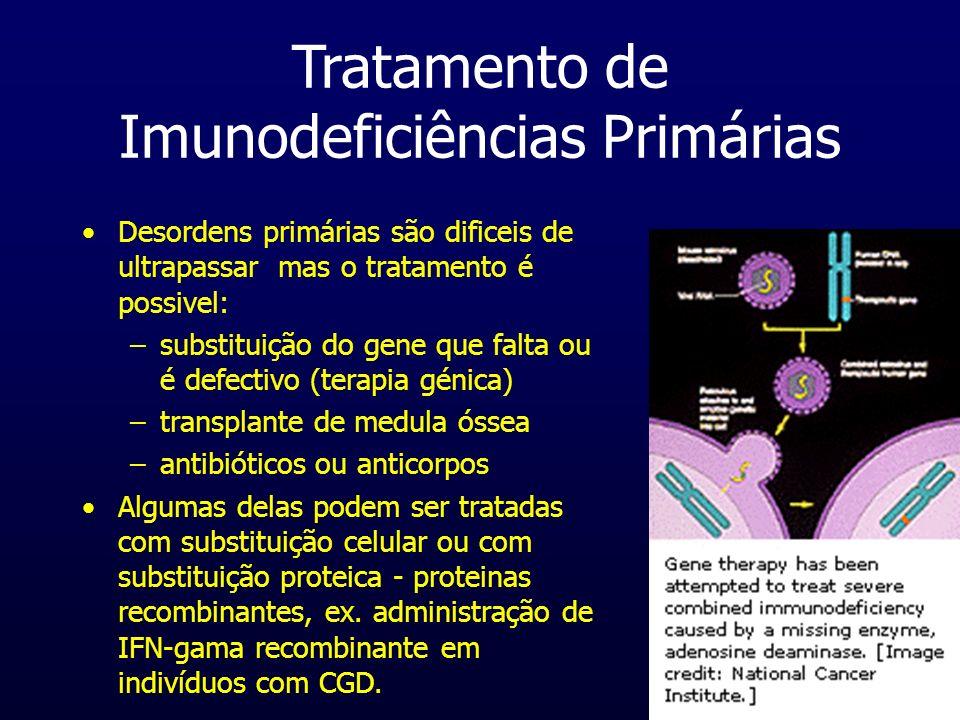 Tratamento de Imunodeficiências Primárias Desordens primárias são dificeis de ultrapassar mas o tratamento é possivel: –substituição do gene que falta