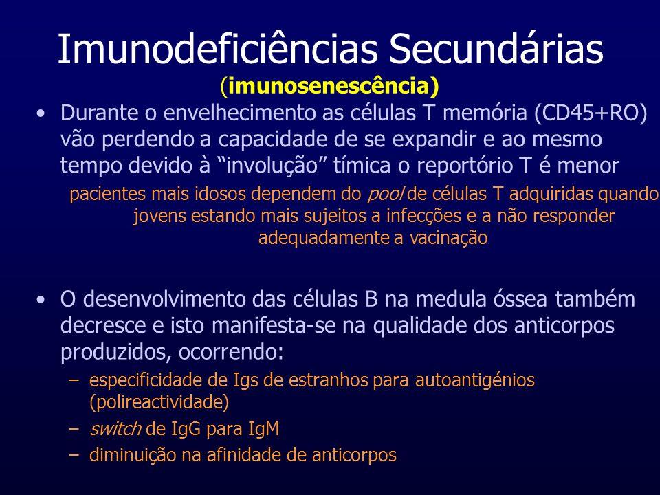 Imunodeficiências Secundárias (imunosenescência) Durante o envelhecimento as células T memória (CD45+RO) vão perdendo a capacidade de se expandir e ao