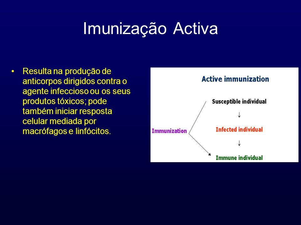 Imunização Activa Resulta na produção de anticorpos dirigidos contra o agente infeccioso ou os seus produtos tóxicos; pode também iniciar resposta cel