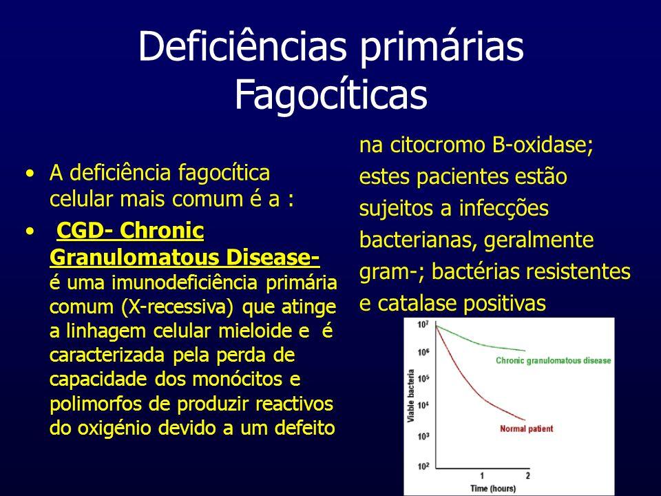 Deficiências primárias (Fagoc.contin.) Chediak-HigashiSyndrome (CHS)Chediak-Higashi Syndrome (CHS) é uma doença caracterizada pela deficiência em elastase e catepsina G nos lissossomas provocando infecções piogénicas que podem ser fatais.