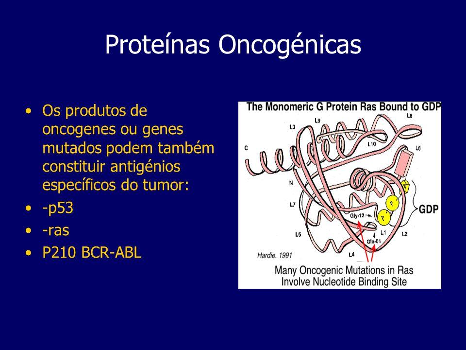 Proteínas Oncogénicas Os produtos de oncogenes ou genes mutados podem também constituir antigénios específicos do tumor: -p53 -ras P210 BCR-ABL