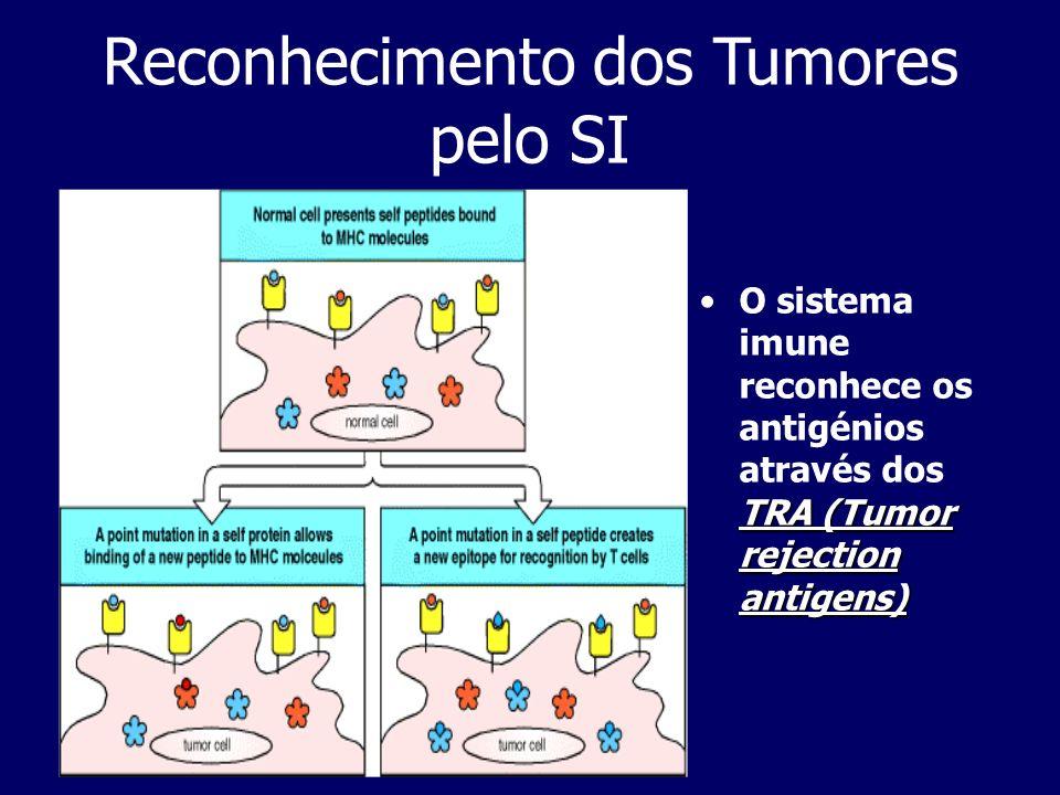 Reconhecimento dos Tumores pelo SI TRA (Tumor rejection antigens)O sistema imune reconhece os antigénios através dos TRA (Tumor rejection antigens)