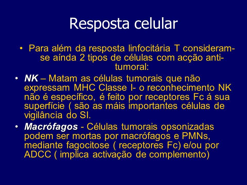 Resposta celular Para além da resposta linfocitária T consideram- se aínda 2 tipos de células com acção anti- tumoral: NKNK – Matam as células tumorais que não expressam MHC Classe I- o reconhecimento NK não é específico, é feito por receptores Fc á sua superfície ( são as máis importantes células de vigilância do SI.