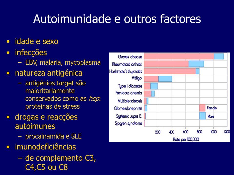 Autoimunidade e outros factores idade e sexo infecções –EBV, malaria, mycoplasma natureza antigénica –antigénios target são maioritariamente conservados como as hsp: proteinas de stress drogas e reacções autoimunes –procainamida e SLE imunodeficiências –de complemento C3, C4,C5 ou C8