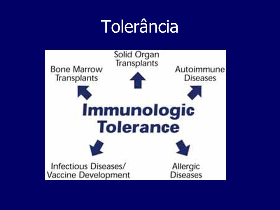 Tolerância no sistema adaptativo self-toleranceEste estado de não- resposta imunitária a antigénios self chama-se de - self-tolerance self-tolerance é um estado imunitário mantido por um mecanismo de delecção clonal que ocorre no Timo e Medula óssea durante o amadurecimento linfocitário- são eliminados clones de linfócitos autoreactivos: tolerância central Os linfócitos que escapam á tolerância central nos orgãos linfóides primários são eliminados ou anergizados nos orgãos linfóides periféricos, através de mecanismos de tolerância periférica