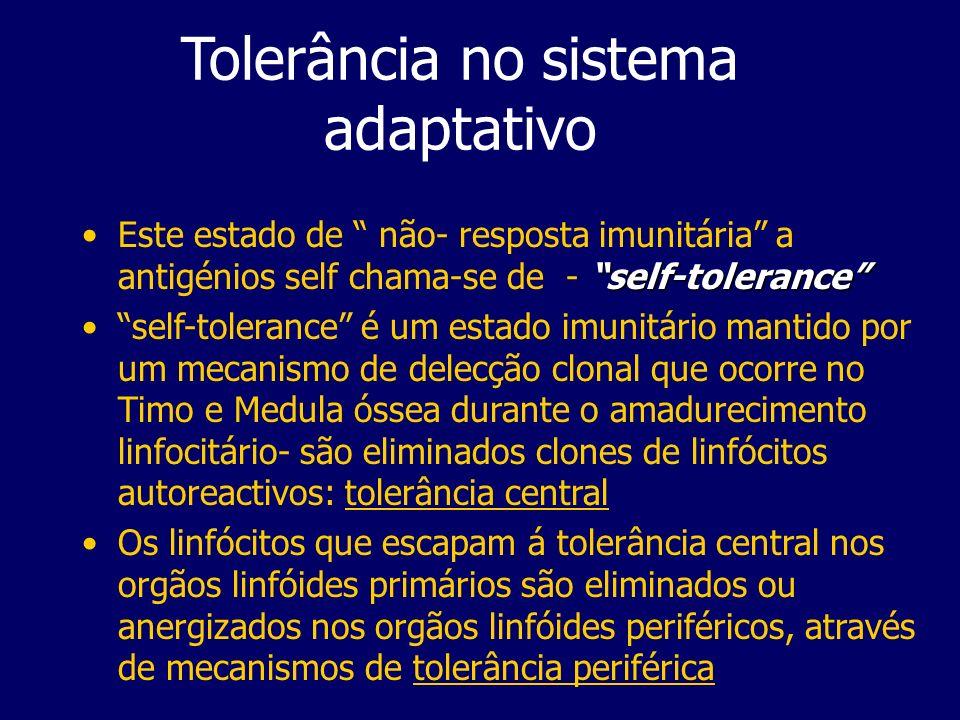 Tolerância Central A tolerância central é o processo em que células T e B imaturas adquirem tolerância a antigénios self durante a sua maturação na medula óssea e Timo- envolve a eliminação de células com receptores para antigénios self
