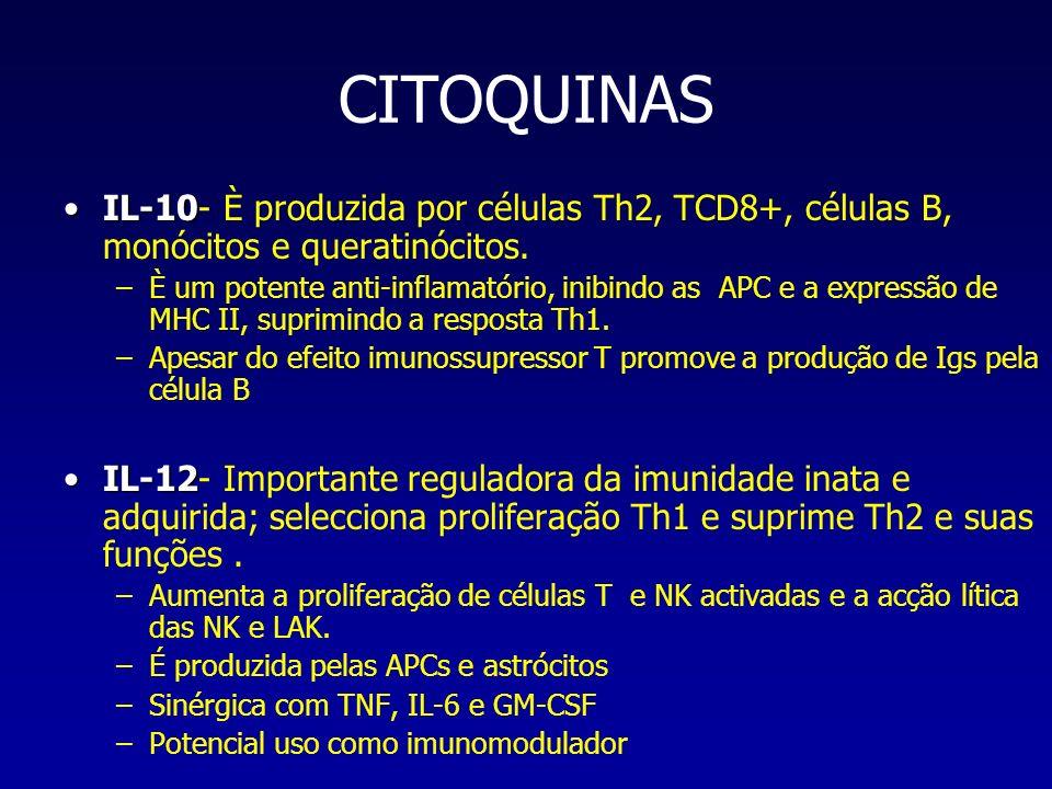 CITOQUINAS IL-10IL-10- È produzida por células Th2, TCD8+, células B, monócitos e queratinócitos. –È um potente anti-inflamatório, inibindo as APC e a