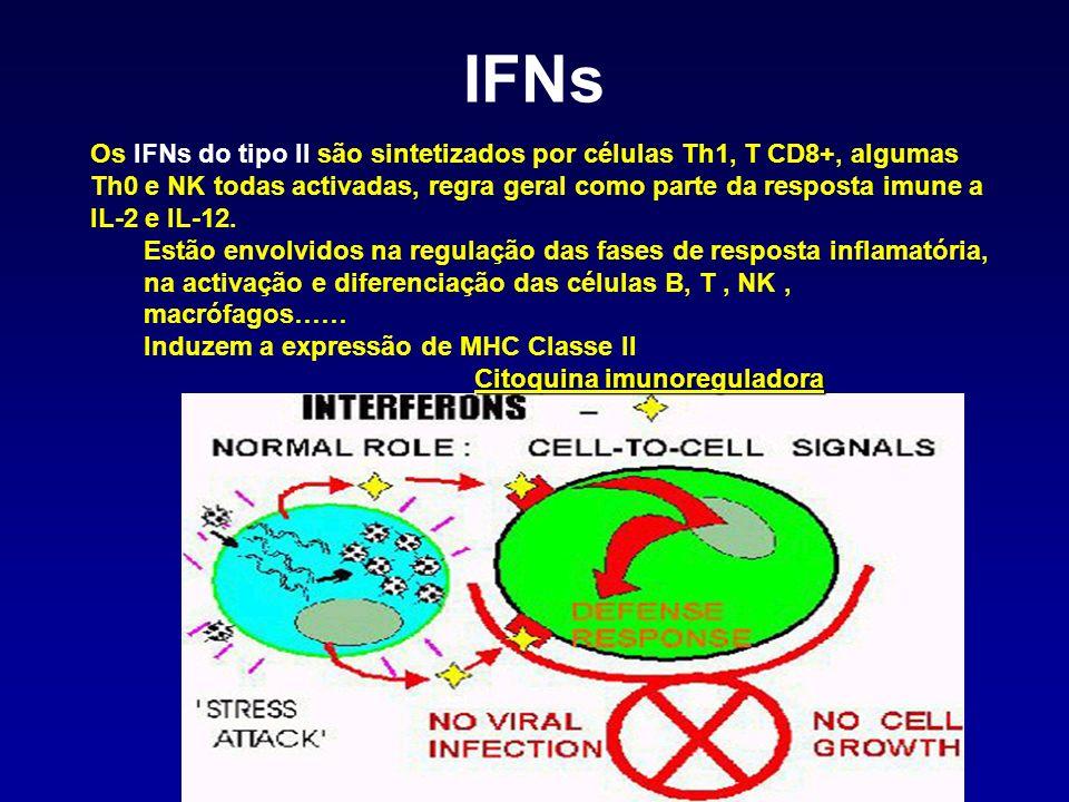 Os IFNs do tipo II são sintetizados por células Th1, T CD8+, algumas Th0 e NK todas activadas, regra geral como parte da resposta imune a IL-2 e IL-12