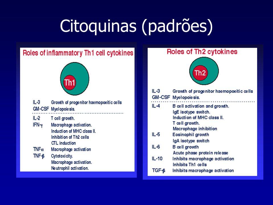 Citoquinas (funções efectoras) Perfil Th1 morte de bactérias intracelulares activação de macrófagos crescimento de células T produção de Igs- activação de complemento inducão de diferenciação CTL-citotoxicidade Perfil Th2 switch de classes de Igs diferenciação de eosinófilos e mastócitos inibição de activação de macrófagos crescimento de células B inibição Th1