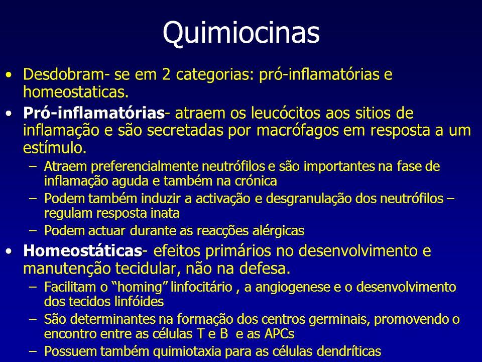 Quimiocinas Desdobram- se em 2 categorias: pró-inflamatórias e homeostaticas. Pró-inflamatóriasPró-inflamatórias- atraem os leucócitos aos sitios de i