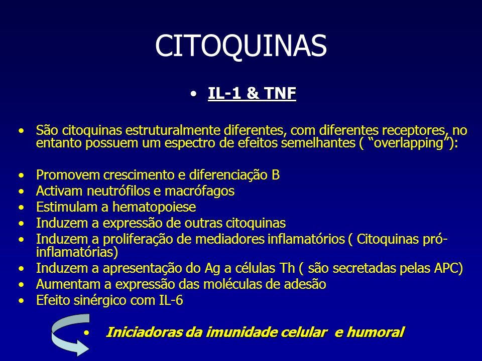 CITOQUINAS IL-1 & TNFIL-1 & TNF São citoquinas estruturalmente diferentes, com diferentes receptores, no entanto possuem um espectro de efeitos semelh