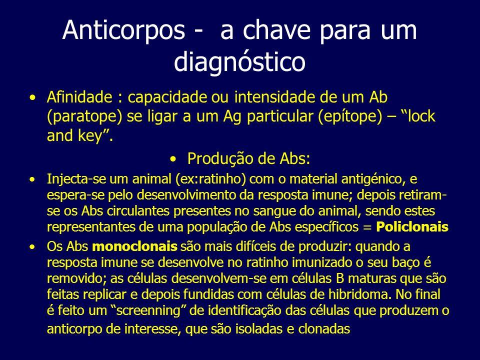 Anticorpos - a chave para um diagnóstico Afinidade : capacidade ou intensidade de um Ab (paratope) se ligar a um Ag particular (epítope) – lock and ke