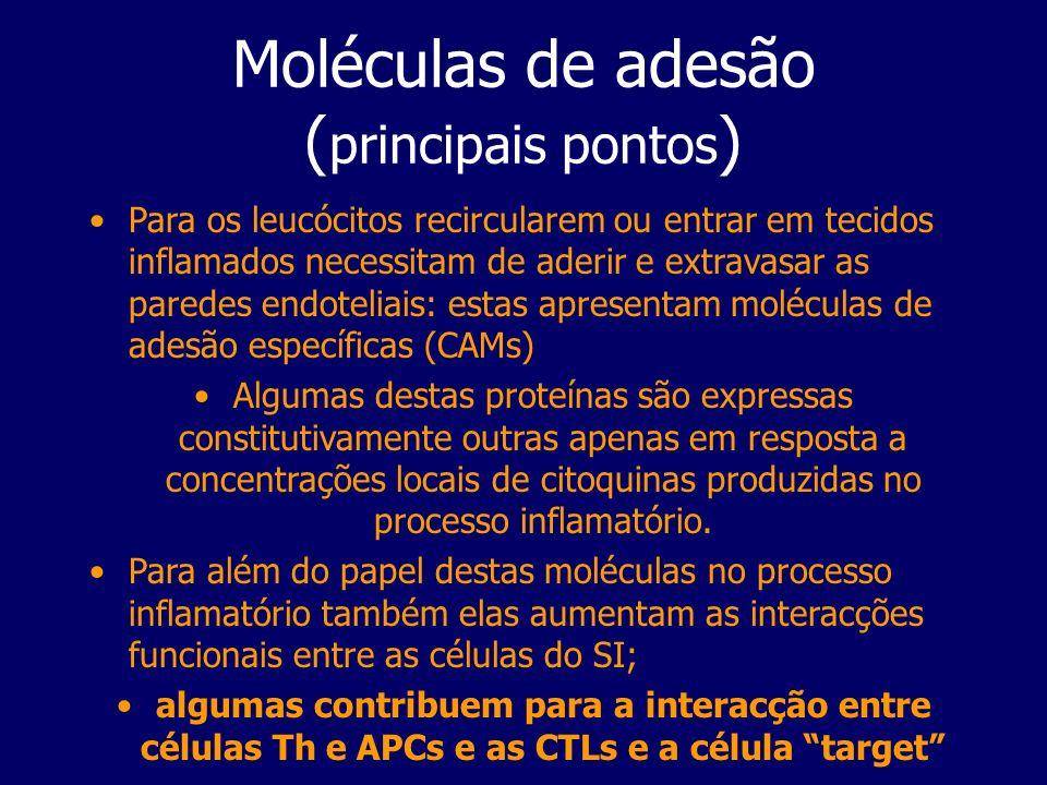 Moléculas de adesão ( principais pontos ) Para os leucócitos recircularem ou entrar em tecidos inflamados necessitam de aderir e extravasar as paredes