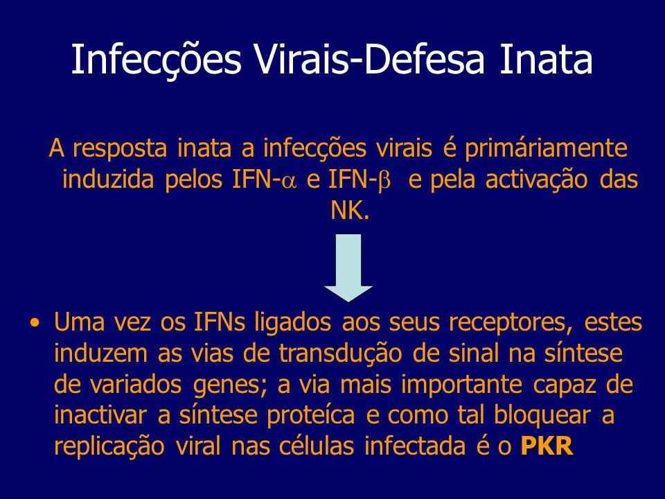Infecções Virais-Defesa Inata A resposta inata a infecções virais é primáriamente induzida pelos IFN- e IFN- e pela activação das NK. PKRUma vez os IF