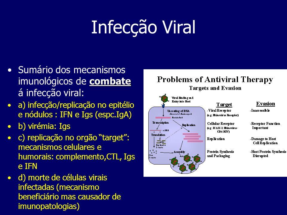 Infecção Viral combateSumário dos mecanismos imunológicos de combate á infecção viral: a) infecção/replicação no epitélio e nódulos : IFN e Igs (espc.