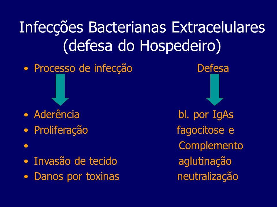 Infecções Bacterianas Extracelulares (defesa do Hospedeiro) Processo de infecção Defesa Aderência bl. por IgAs Proliferação fagocitose e Complemento I