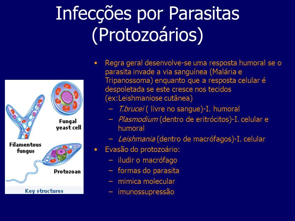 Infecções por Parasitas (Protozoários) Regra geral desenvolve-se uma resposta humoral se o parasita invade a via sanguínea (Malária e Tripanossoma) en